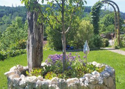 58 C Birnbaum ganz neu
