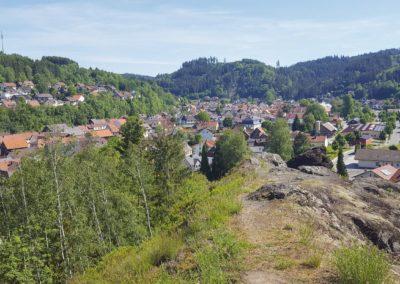 6 Steinwiesen